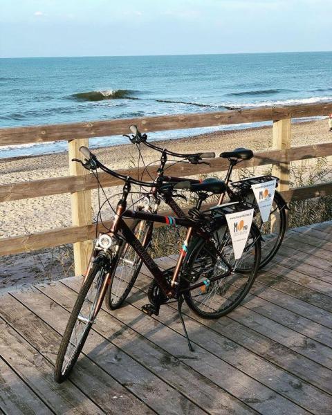 Wypożyczalnia rowerów 3